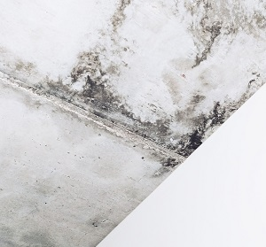 mold-failed-home-inspection-relist-home